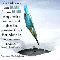 Surah At-Talaq Ayat 2-3 ومن يتق اللـه يجعل له مخرجا  ويرزقه من حيث لا يحتسب (2)...And whoever fears Allah - He will make for him a way out ( 3 )  And will provide for him from where he does not expect.  #Muhammed #Mohammed #Muhammad #Allah #God #Peace #love #islam #peaceforall  #muslimah #Hijab #Makkah #Madinah #Revert #Jannah #Quran #religion #Mercy Peace be upon him. by globalilm