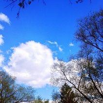 Ну и пусть я заМКАДыш, зато у меня всегда небо как в сказке Peace, Clouds, Photography, Outdoor, Shopping, Outdoors, Outdoor Games, Photograph, Outdoor Living