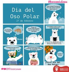 #RedescubreLaCiencia - Twitter Search / Twitter Polaroid, Comics, Animals, Search, Twitter, Mantle, Coarse Hair, Polar Bear, Animales