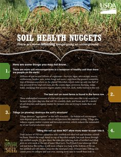 Soil Health Nuggets - There are some remarkable things going underground that might just amaze you. This publication provides readers with 10 soil health fun facts that might cause you to look at soil (and the way we treat it) in a whole new light.