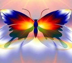 Mariposa reimbow