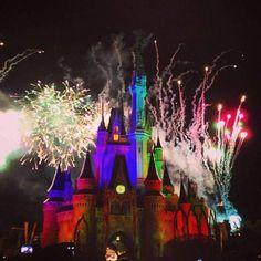 Disney implantará detectores de metais em parques (foto: Reprodução/Facebook)