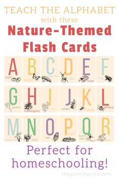 Teach the alphabet in a way you'll be happy to display in your home! These adorable flash cards can be used strictly for learning, or also decorate a homeschool or reading space!