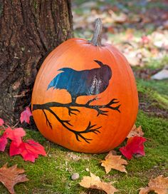 Crow Painted Pumpkin