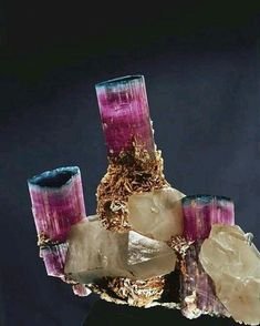 """The """"Candelabra"""" Tourmaline 