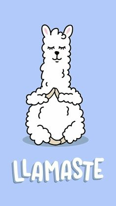 Llamaste wallpaper - Best of Wallpapers for Andriod and ios Tumblr Backgrounds, Cute Backgrounds, Tumblr Wallpaper, Cute Wallpapers, Wallpaper Backgrounds, Iphone Wallpaper, Alpacas, Cute Llama, Funny Llama