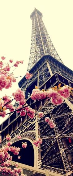 The Eiffel Tower. Paris, France