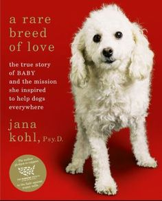 """A rare breed of love:the true story of Baby and the mission she inspired to help dogs everywhere, by Jana Kohl. Kohl, a psychologist and former employee of Simon Wiesenthal Center for Holocaust Studies, stumbled upon a puppy mill. She adopted Number 94, a """"spent"""" miniature poodle breeder slated for euthanasia. Renamed Baby, the dog's poor health resulted in a leg amputation. The eye-opening experience launched Kohl's crusade to raise public awareness for animal cruelty. Adult Non Fiction…"""