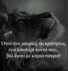 Ναι αλλά θέλω το λιοντάρι!! Feeling Loved Quotes, Lion Quotes, Cheer You Up, Greek Quotes, Deep Thoughts, Strong Women, True Stories, Lyrics, How Are You Feeling