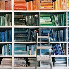 Point/Counterpoint: Color-Coded Bookshelves - Visually stunning decorating idea, or a frivolous design trope? Two Lonny editors face off on Slack. Bookshelf Styling, Interior Design Living Room, My Dream Home, My House, Living Spaces, Sweet Home, Villa, Bookcases, Blue Bookshelves