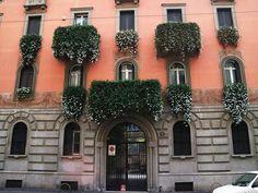 Profumo di gelsomino in via Fontana Foto di Angelo Foto Rainbow #milanodavedere Milano da Vedere