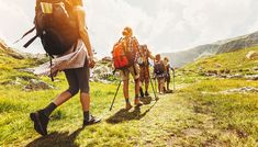 Search from 60 top Hiking Walking Pole pictures and royalty-free images from iStock. Find high-quality stock photos that you won't find anywhere else. Best Hiking Backpacks, Walking Poles, Winter Hiking, Snowy Mountains, France, Hiking Gear, Go Camping, Trekking, Backpacking