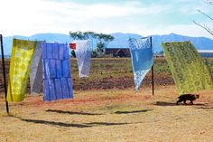 Beautiful Batik printed fabrics drying in the wind in Swaziland.  These fabrics are examples of the fabrics that make up our Swazi pillows.