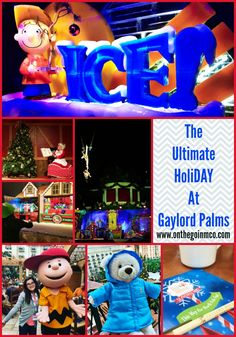 The Ultimate HoliDAY At The Gaylord Palms