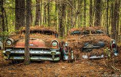 Nghĩa trang xe cổ kỳ lạ nhất hành tinh - TPauto.com.vn