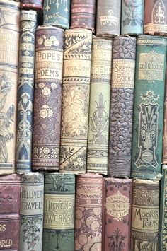 beautiful old book spines