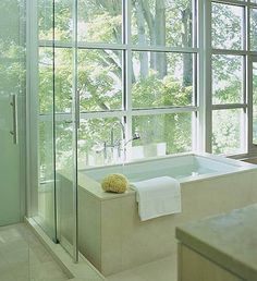 A (Bath) Room with a View, shower clear view also