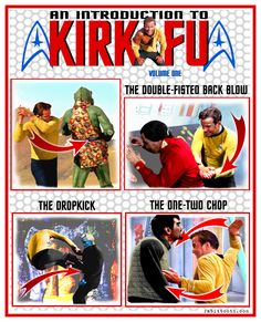 """An Introduction to Kirk-Fu."" Another Pinner said:  I am laughing rather loudly right now. I'll be the first to admit (as a martial artist,) that the fighting in Star Trek...not particularly realistic."