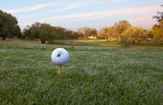 Just minutes away in nearby Boerne, the Hill Country's rolling contours and live oaks make for tight shots on the Fair Oaks Ranch Golf and Country Club.