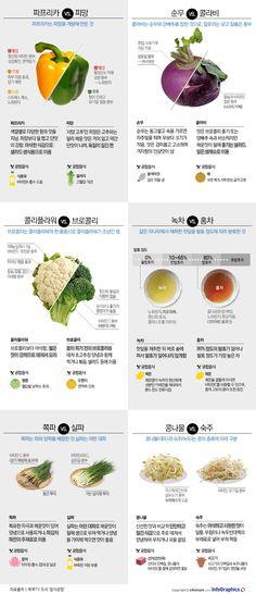 [같은 듯 다른 ①] 파프리카와 피망의 차이를 아시나요? - 조선닷컴 인포그래픽스 Web Design, Food Design, Diet Recipes, Cooking Recipes, Healthy Recipes, Recipe Book Design, Healthy Menu, Korean Food, Food Plating