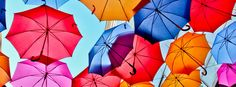 The Most Innovative Companies Don't Worry About Consensus - Maxwell Wessel - Harvard Business Review