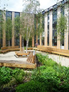 Case study of landscape design of Woodland Trust Headquarters by UK landscape…