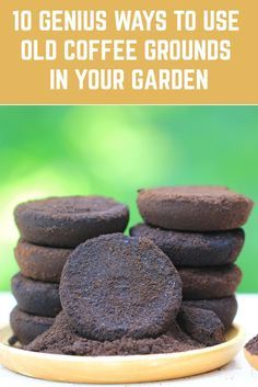 10 Genius Ways To Use Old Coffee Grounds In Your Garden Coffee grounds left over from freshly brewed coffee have many uses in the garden. You don't necessarily have to be a coffee fan to use the grounds in your garden. Many coffee shops offer them for Garden Yard Ideas, Lawn And Garden, Garden Projects, Garden Layouts, Garden Beds, Growing Vegetables, Growing Plants, Growing Tomatoes, Growing Greens