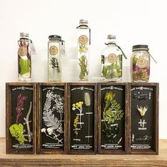 Coming soon!#urbangreenmakers #herbarium #oil #woodbox #glassbottle #workshop