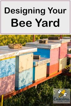 How to set up a bee yard or apiary that is easy to use. Hive placement and bee yard accessibility is important to successful beekeeping. Bee Hive Plans, Beekeeping For Beginners, Raising Bees, Bee Boxes, Bee Hives Boxes, Bee Farm, Backyard Beekeeping, Beekeeping Course, Places In Europe