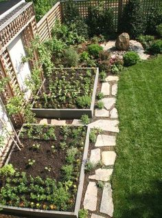 25 Amazing Small Vegetable Garden Design Ideas For Home Backyard Garden Take into consideration the type of vegetables you want to grow, soil conditions and available sunlight. There is a vegetable garden design for every space regardless of size. Backyard Vegetable Gardens, Backyard Garden Design, Small Garden Design, Backyard Landscaping, Outdoor Gardens, Home Vegetable Garden Design, Small Garden Layout, Small Garden Plans, Vegetables Garden