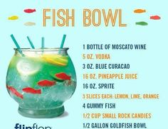 1000 images about 21st birthday ideas on pinterest for Fish bowl rocks