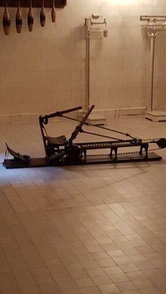Rowing machine in gym