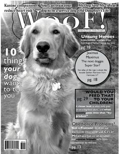 My Golden Retriever, Jax. Protector, guardian, champion.  He is the the reigning King of adventure dogs. As you can see he was featured in Woof! magazine... which, of course, I invented just to feature him in! Having a Golden Retriever has spoiled me for life. :)