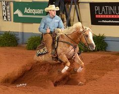 VON STEP AT A TIME - 2009 palomino stallion   Wimpys Little Step x Von Freckles by Colonel Freckles   SIRE: WIMPYS LITTLE STEP - NRHA HALLL OF FAME - $8 MILLION DOLLAR SIRE   DAM: VON FRECKLES        Von Step At A Time by Wimpys Little Step, out of Von Freckles made a spectacular run to the Reserve Championship level 2 and placed 5th in the level 3, bringing home over $17,983+       For more info contact Michelle Cannon  at Cannon Quarter Horses PH: 210-381-3132 Contact us for ...