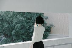 nock-nock-nock: Ye Fei - 孤独な