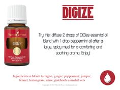 DiGize essential oil is one of our most unique essential oil blends, combining Tarragon, Ginger, Pep Patchouli Oil, Patchouli Essential Oil, Essential Oil Perfume, Essential Oil Diffuser Blends, Essential Oils Guide, Ginger Essential Oil, Therapeutic Grade Essential Oils, Essential Oil Uses, Digize Essential Oil Young Living