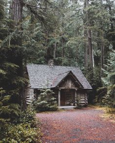Perfect Cabin in the Woods