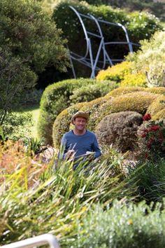 Landscape Architect Anton James of JMD Design. Photo by Brett Boardman Anton, Interview, Gardens, Landscape, Artist, Design, Outdoor Gardens, Garden, Landscape Paintings