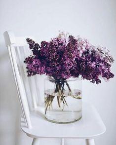 Captivating Choosing Your Wedding Flowers Ideas. Remarkable Choosing Your Wedding Flowers Ideas. Lilac Flowers, Beautiful Flowers, Send Flowers, Lilac Bouquet, Blue Peonies, Faux Flowers, Tropical Flowers, Deco Nature, Flower Aesthetic