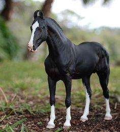 Black Marwari Rajah - Sculptor Jennifer Scott-Irwin Painter Nikki Button - model horse. Wow