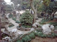 The next garden is the LINGERING GARDEN .. This is a small court of stone…