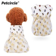 Small Puppies, Small Dogs, Small Dog Clothes Patterns, Pet Store, Wholesale Clothing, New Product, Baby Shoes, China, Pets