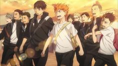 Haikyuu! ~ Team Karasuno (Crows)