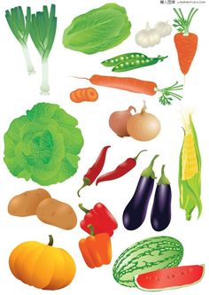Common fruits and vegetables vector material Download
