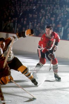 Chicago Blackhawks Stan Mikita in action vs Boston Bruins at Chicago Stadium Chicago IL CREDIT Neil Leifer Blackhawks Hockey, Chicago Blackhawks, Neil Leifer, Hockey Pictures, Ice Hockey Players, Wayne Gretzky, Hockey Games, Boston Bruins, Back In The Day