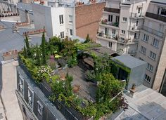 05866600-photo-carnet-de-travail-d-un-jardinier-paysagiste.jpg (1361×988)