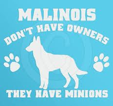 Image result for belgian malinois silhouette logo