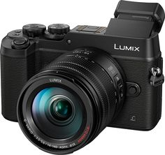 I had to have the first 20 megapixel MFT camera, the Panasonic Lumix DMC-GX8, and very happy with it. Considerably bigger than GX1 and GX7 but handles beautifully, and still a lot smaller than any DSLR. Improved low light performance enough that I'll take at ISO 3200 rather than use flash - just as well as it doesn't have its own pop up flash!