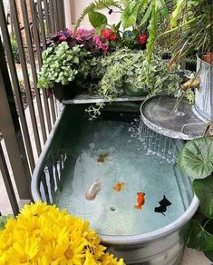 41 Amazing Fish Pond Gardens Design Ideas to Beautify Your YardYou can find Fish ponds and more on our Amazing Fish Pond Gardens Design Ideas to Beautify Your. Indoor Pond, Indoor Water Garden, Outdoor Fish Ponds, Outdoor Fish Tank, Fish Ponds Backyard, Backyard Waterfalls, Fish Pond Gardens, Fish Garden, Small Water Gardens