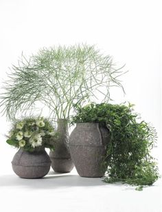 Flower pots can transform any garden or interior Green Centerpieces, Centerpiece Decorations, Flower Decorations, Flower Planters, Flower Vases, Flower Art, Indoor Garden, Garden Pots, Indoor Plants